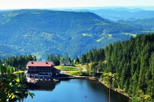 Schönste Schwarzwald-Erholung im 4-Sterne-Superior-Hotel