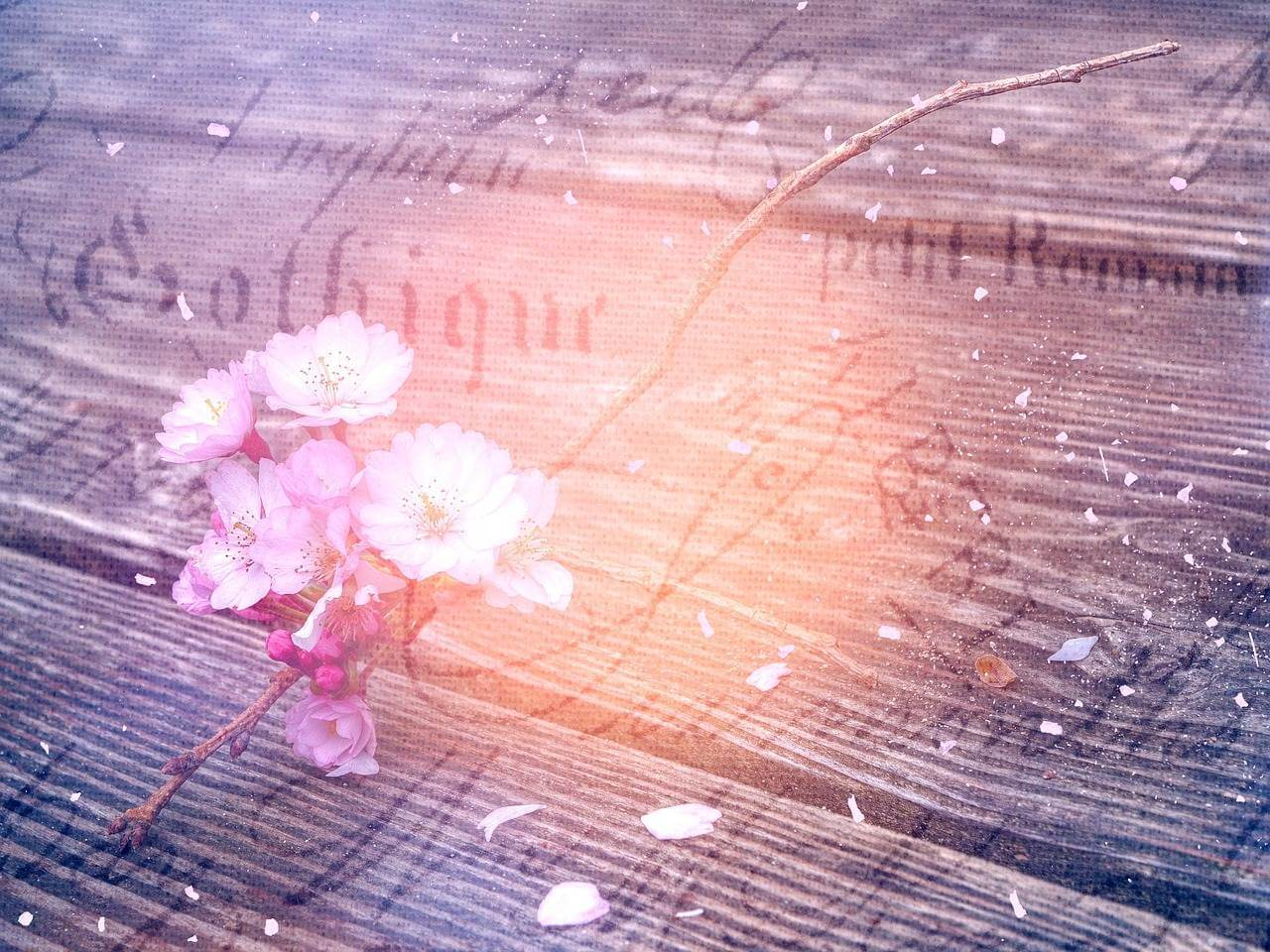 Liebesgedichte – Mit jedem Wort