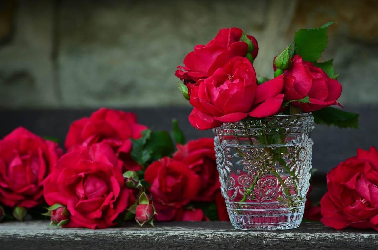 Liebesgedichte – Tiefe Gefühle