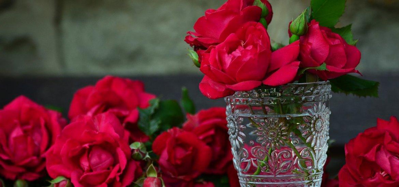 6. Geschenktipp – Echte St. Leonhard Rose