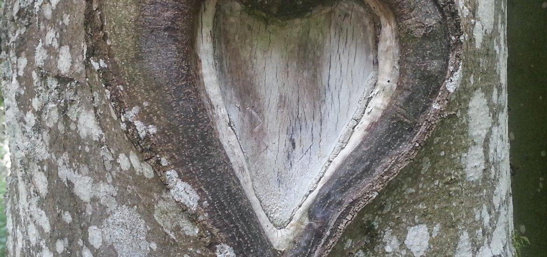Liebesgedichte - Gefühls