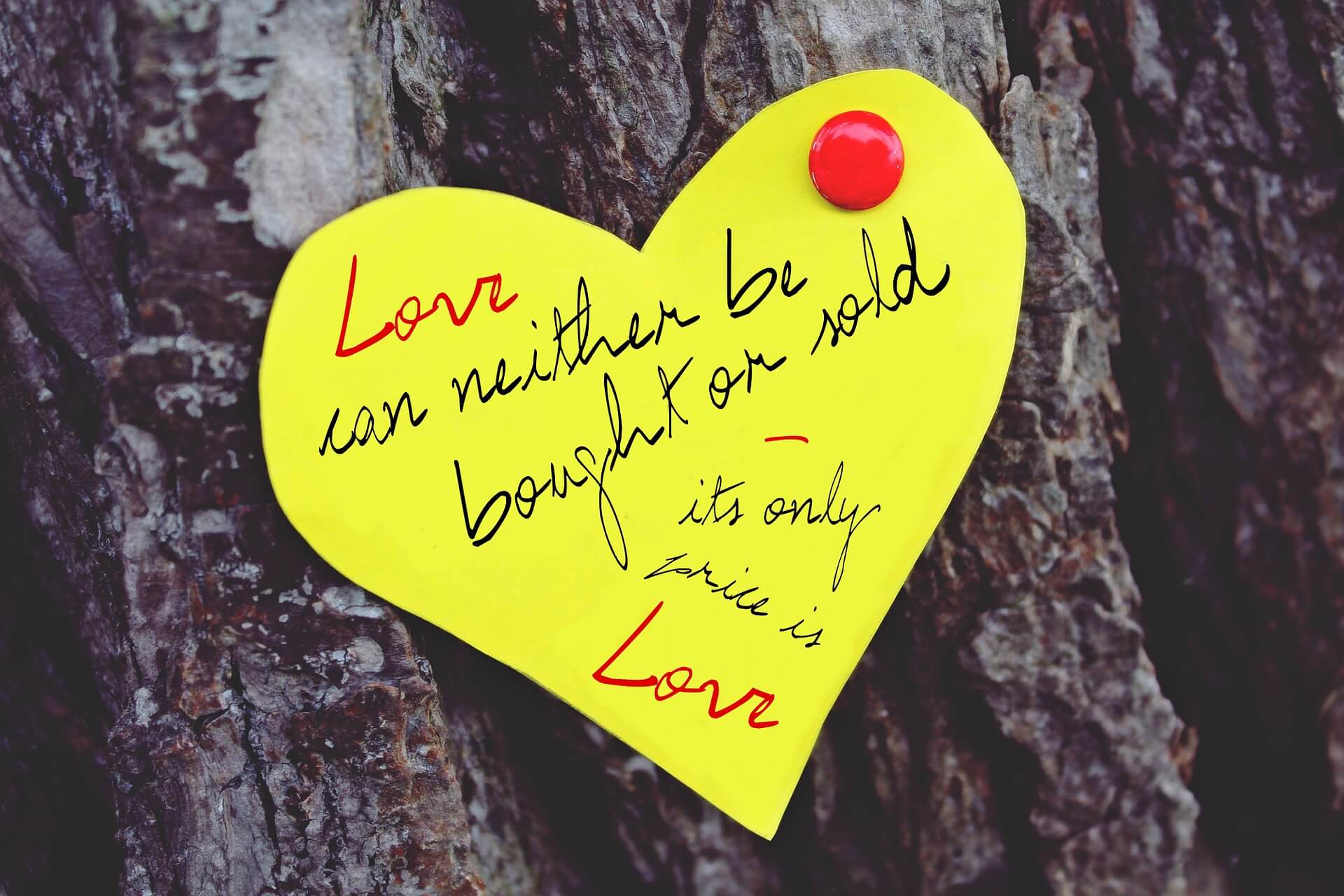 love-947451_1920