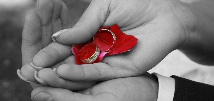 Hochzeitsringe, Trauringe oder Eheringe