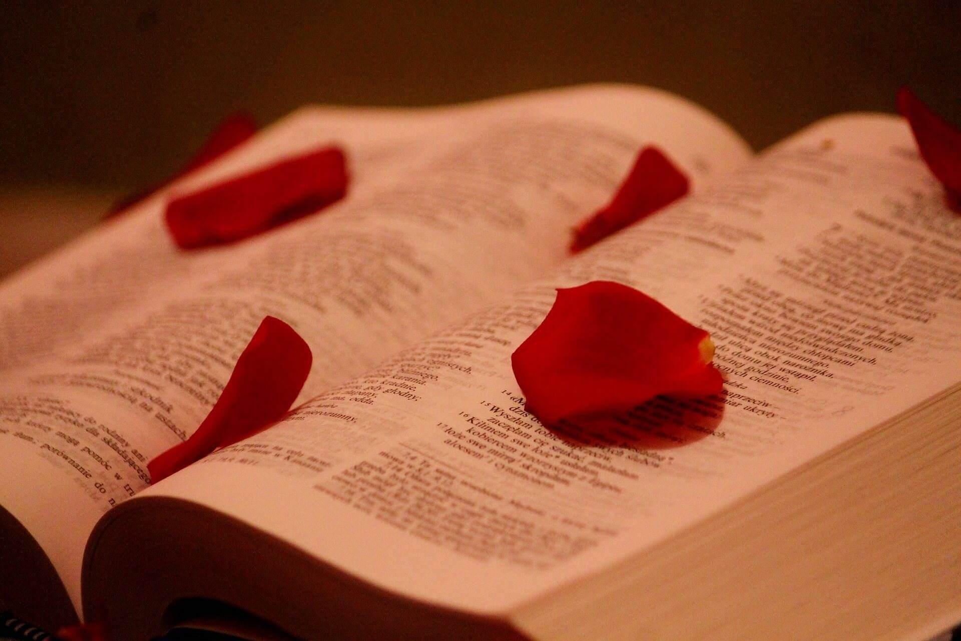 the-scriptures-813802_1920