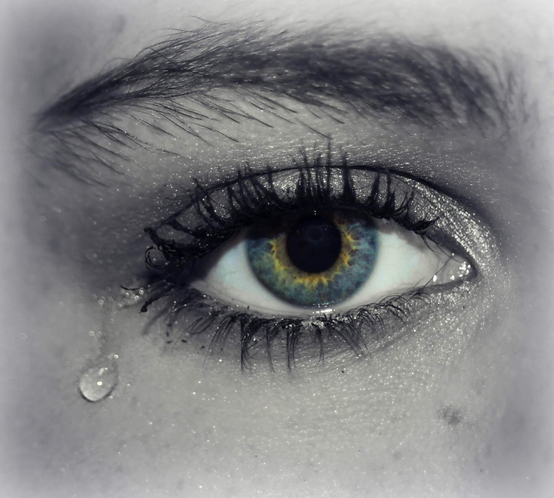 eye-609987_1920