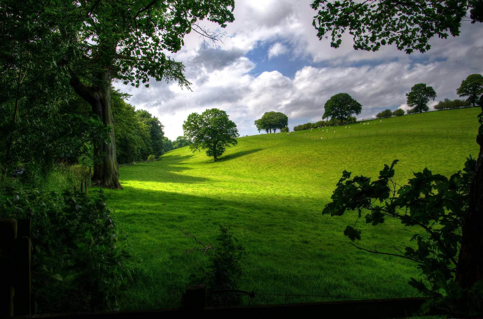 landscape-403165_1920