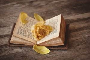 Liebesgedichte - Sie saßen und tranken am Teetisch von Heinrich Heine book-1291164_1280-300x200 Liebe book 1291164 1280