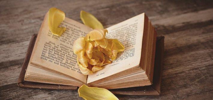 Liebesgedichte - Buch der Lieder von Heinrich Heine