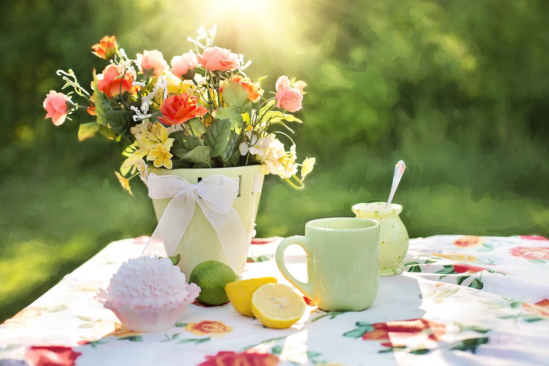 summer-still-life-783347_1920