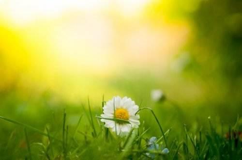 Liebesgedichte – Wink von Johann Wolfgang von Goethe