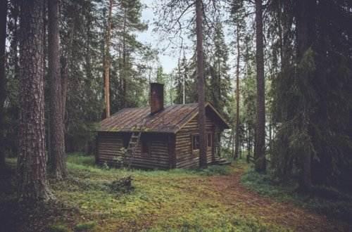 Liebesgedichte – Einsamkeit von Rainer Maria Rilke