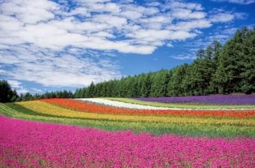Liebesgedichte – Wandelt sich rasch auch die Welt von Rainer Maria Rilke
