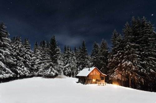 Liebesgedichte – Wenn es Winter wird von Christian Morgenstern