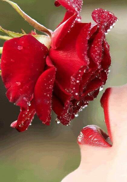 Weil nur die Liebe zählt – Liebesgedichte für deinen allerliebsten Schatz
