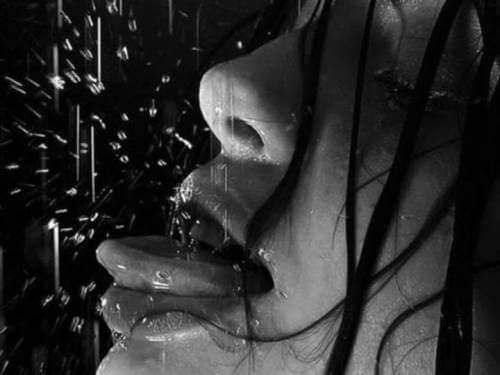 Liebesgedichte - Waller im Schnee von Stefan George